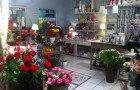 Le Bouquet de Laurine, Les fleurs du bien 2