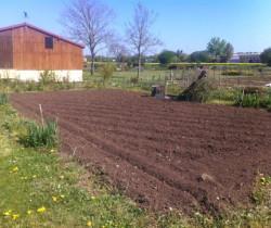 Retour à la terre pour les jardiniers