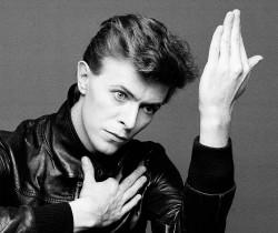 Bowie comme beau oui