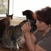 Stéphanie Chevalier, les chats dans la peau