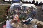 Solarium dans l'aquarium