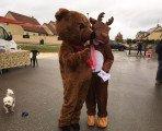 Ours brun et caribou sur le marché