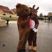 Ours brun et caribou sur le marché le 3 décembre