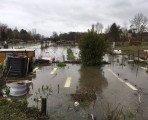 Les jardins familiaux sous les eaux