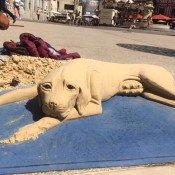 Le chien de sable