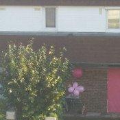 Octobre rose la couleur de mise