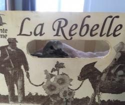 La rebelle tourterelle